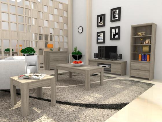 Living Room Novi